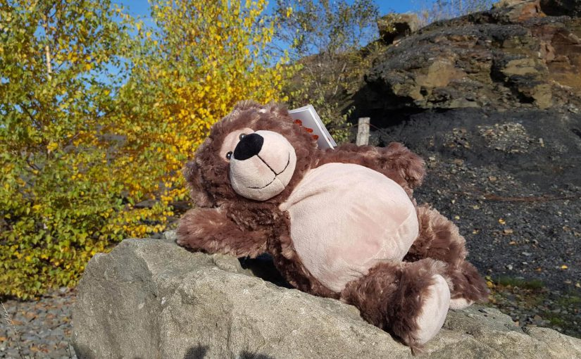 Teddy4you Teddy Bobby Bär
