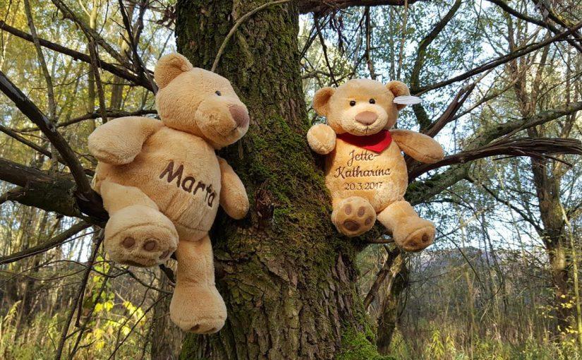 Teddy mit Namen Kurzwissen