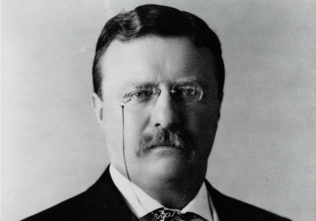Teddy - Theodore Roosevelt ist der Namensgeber des Teddybären
